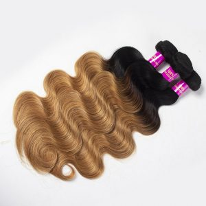 1B/27 body wave hair bundles